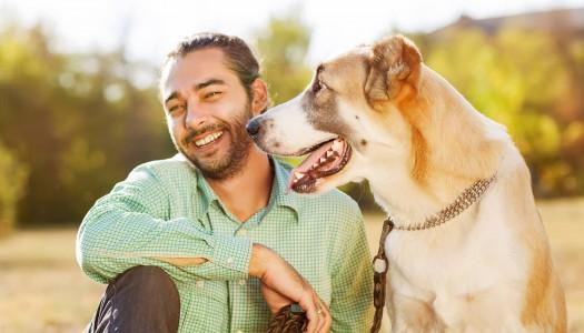 TEST: Quanto siete bravi come padroni dei vostri cani?