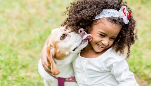 Perché i vermi del cane e del gatto rappresentano un rischio anche per voi