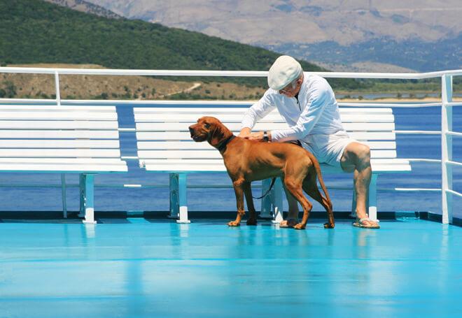 viaggiare con il cane in barca