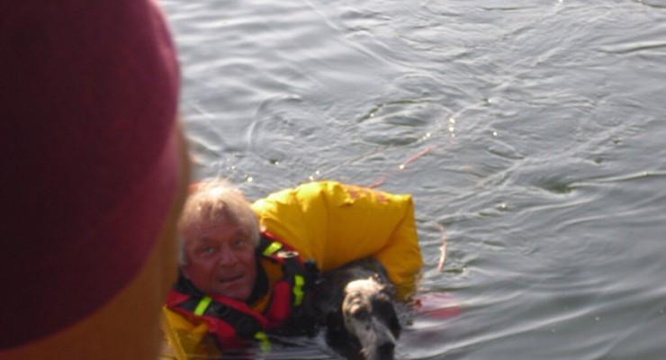 cane nel laghetto salvato dai pompieri