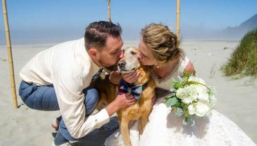 Un matrimonio speciale celebrato con il cane malato