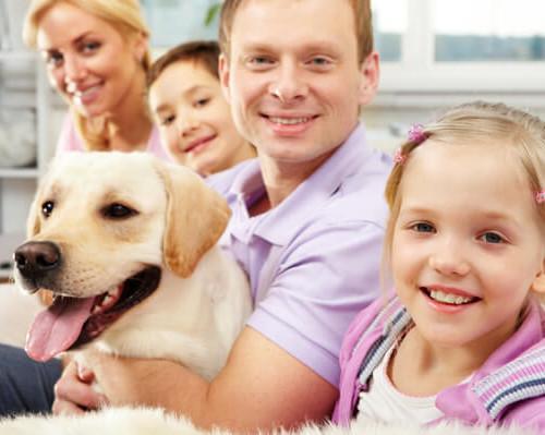 scegliere un cane in famiglia