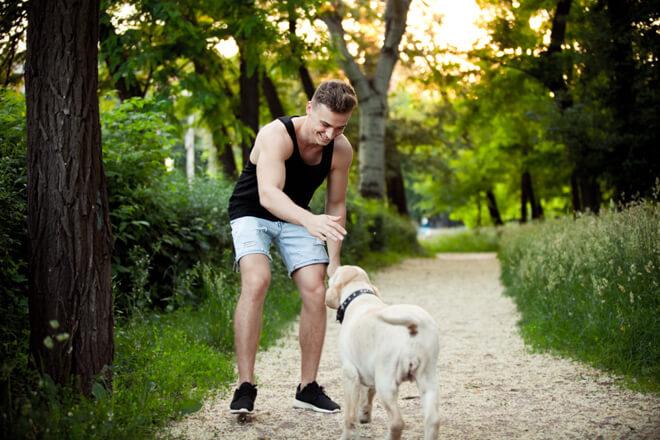 inizio del gioco con il cane