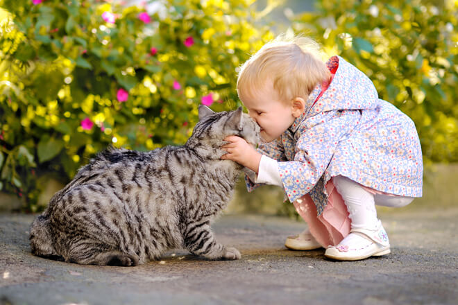 adozioni-di-gatti-bambino