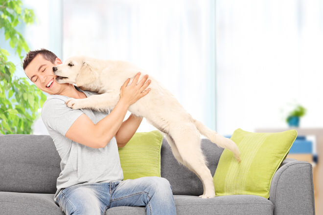 linguaggio-cane-bacio