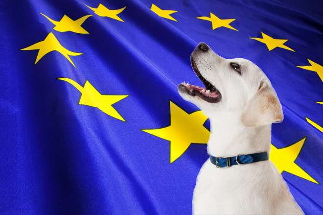 vacanza-cane-estero-europa