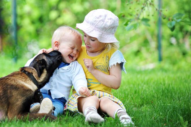 cane bacio bambino