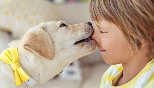 Cani e bambini: arriva un bimbo in famiglia… e il cane?