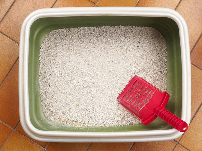 Lettiera di argilla