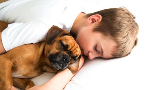 Bimbo diabetico salvato dal suo cane