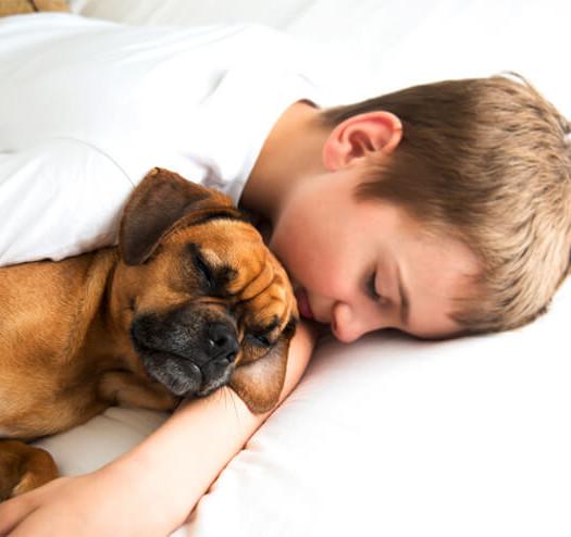 Bimbo diabetico salvato dal cane