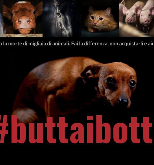 #buttaibotti cane