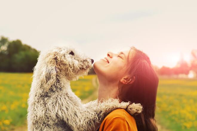 passeggiare con il cane in coppia
