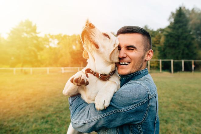 comportamento-cani-abbraccio