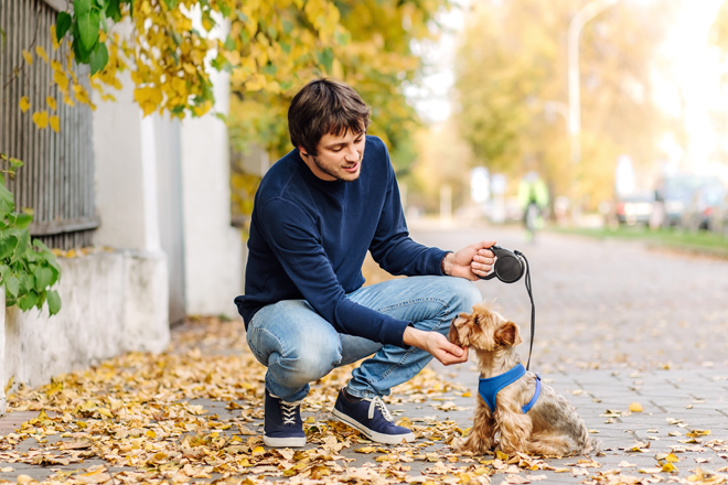 ragazzo porta a spasso il proprio cane